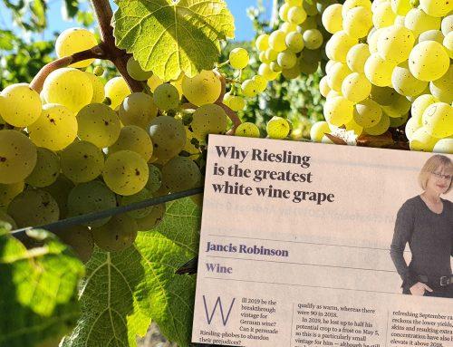 Waarom Riesling de mooiste witte wijn druif is